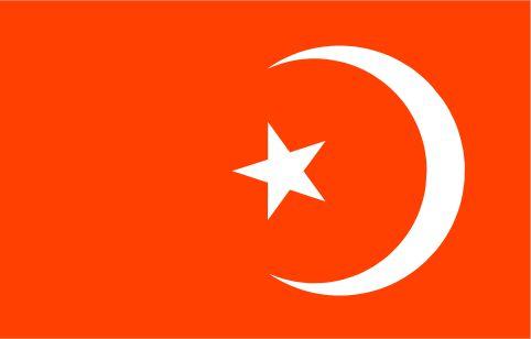 NOI Flag